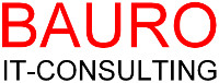 31 BAURO IT CONSULTING